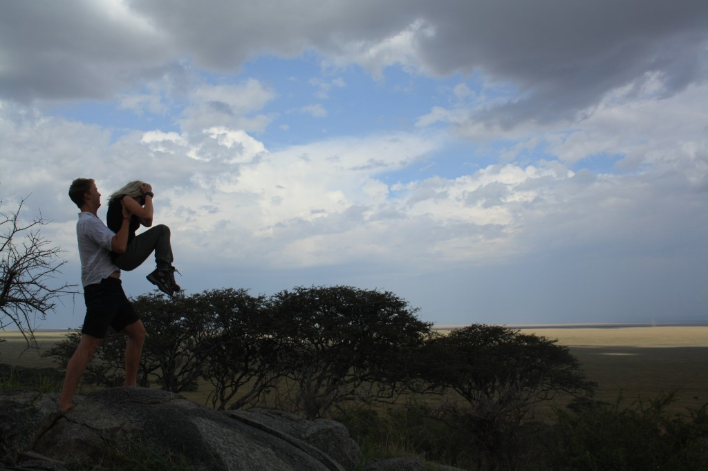Lion King in the Serengeti