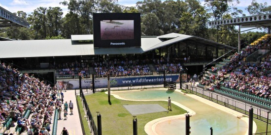 Ampitheatre at Australia Zoo