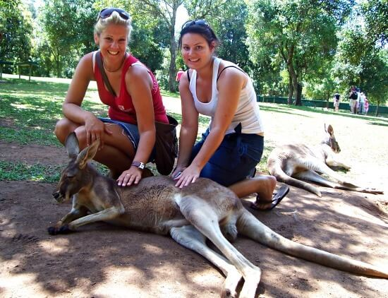 Me and the kangaroo at Australia Zoo