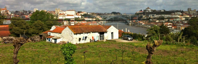 The view from Graham's Wine Caves in Porto