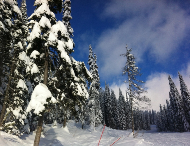 Top Tips for First Time Skiers from a Second Timer