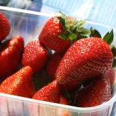 3 Healthy Snacks for Travelling