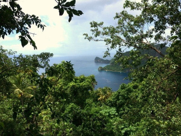 Zip lining St Lucia