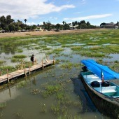 Exploring Lake Chapala and Saving 'That' Dog
