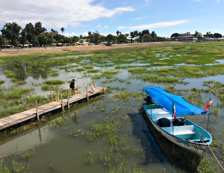 Exploring Lake Chapala and Saving 'That' Dog