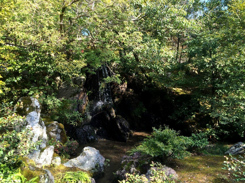 Kyoto Garden Pavilion
