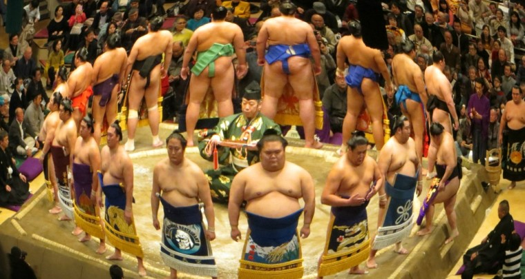 Sumo Wrestling: I Don't Get It?