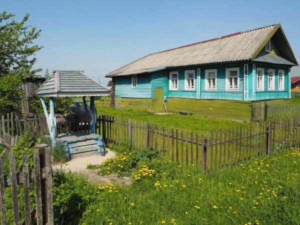 Goritsy houses