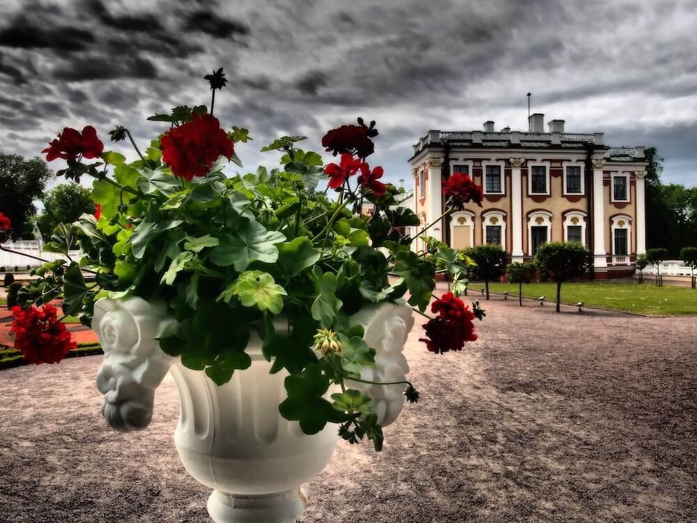 palace-tallinn-photos