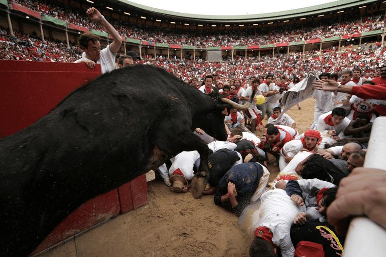 cruellest festivals