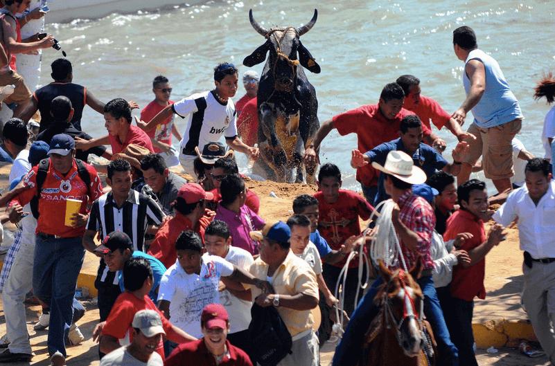 bull festival in MExico