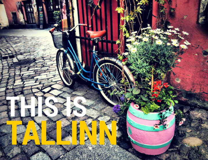31 Photos Guaranteed to Make You Want to Visit Tallinn