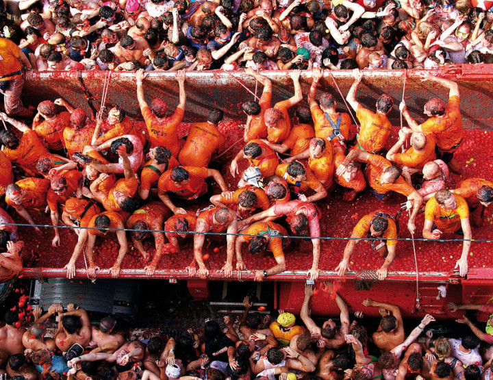 This Week I Will Mostly Be at La Tomatina Festival