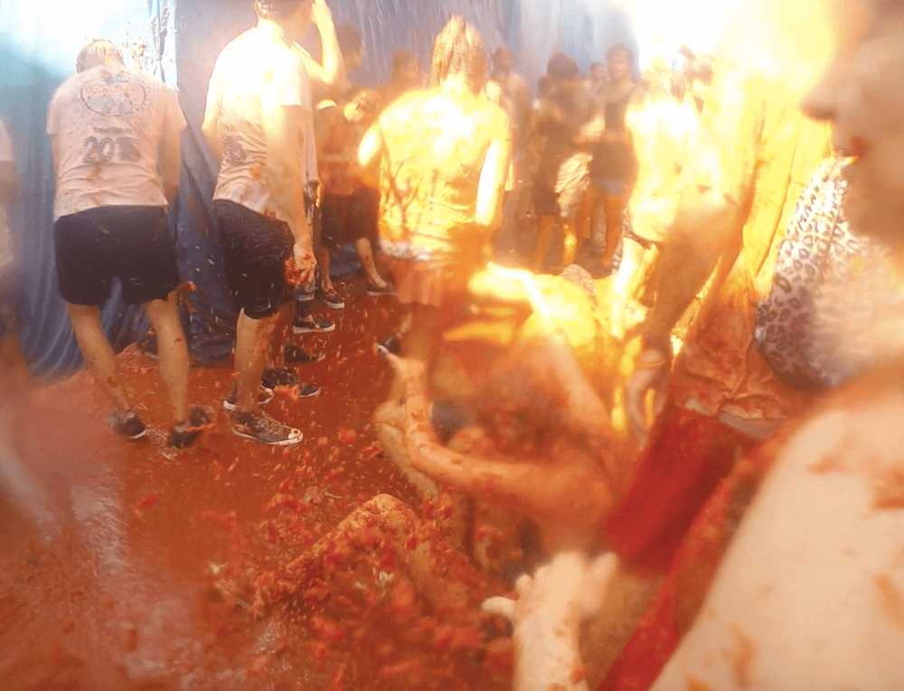 Photos of Tomatina