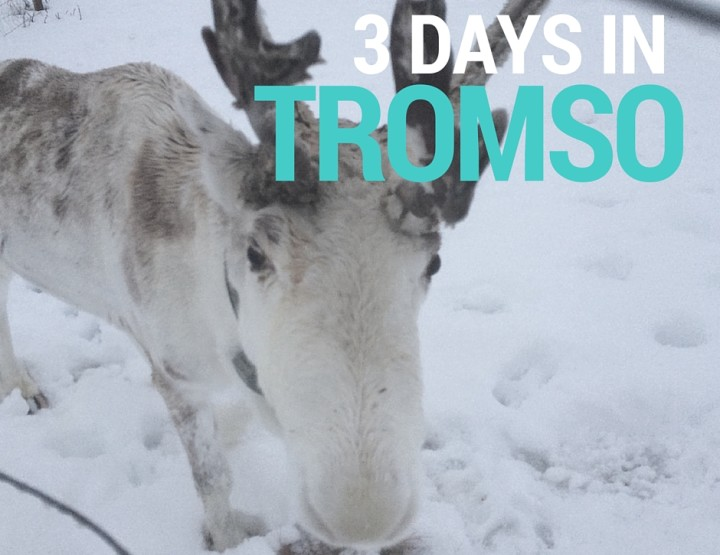 3 Days in Tromso: How to Have the Best Trip Ever