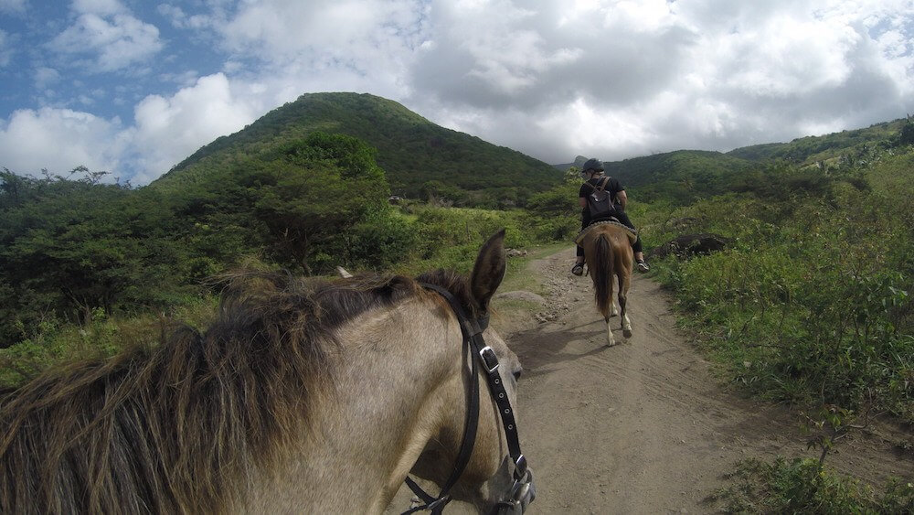 St Kitts horse riding
