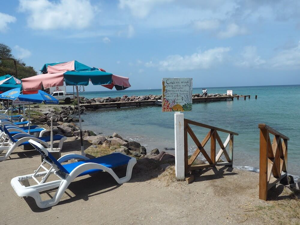 How much does St Kitts cost