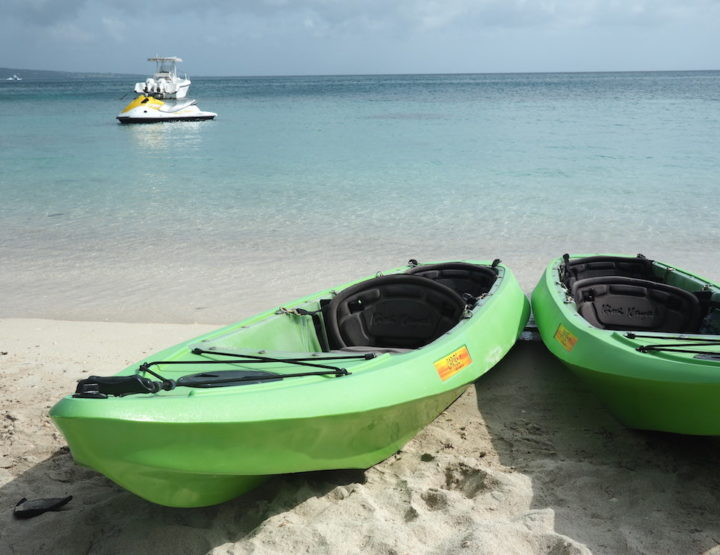 What to Expect from St Kitts