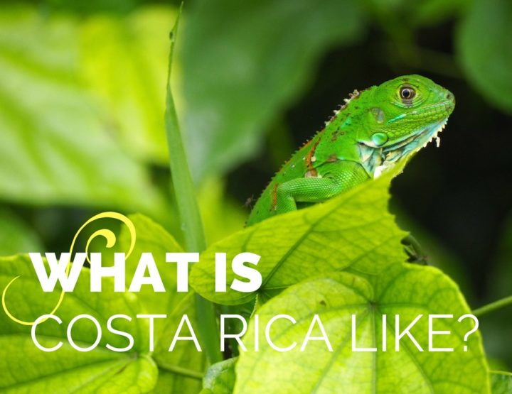 What is Costa Rica Like?