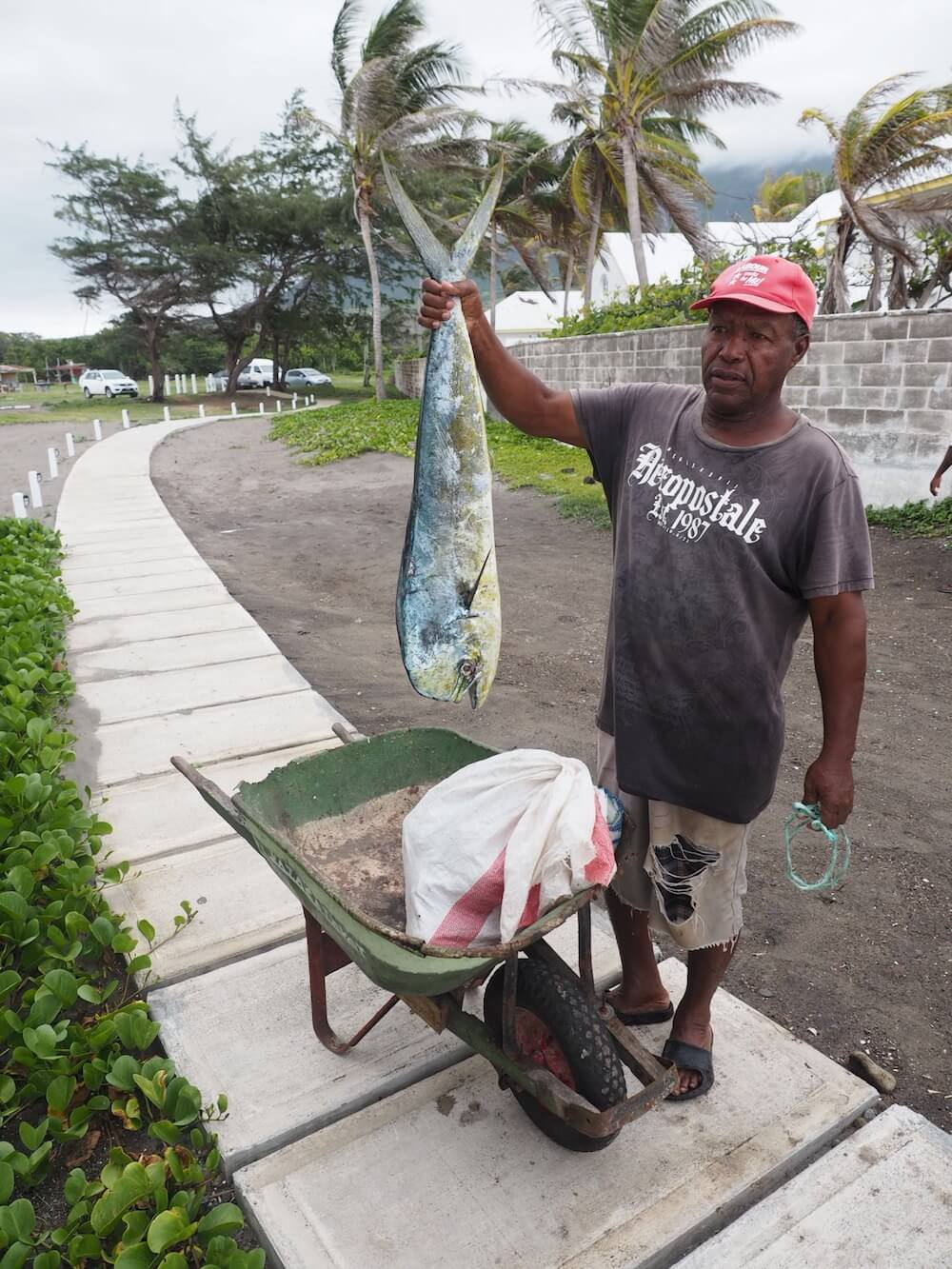Food to eat in St Kitts