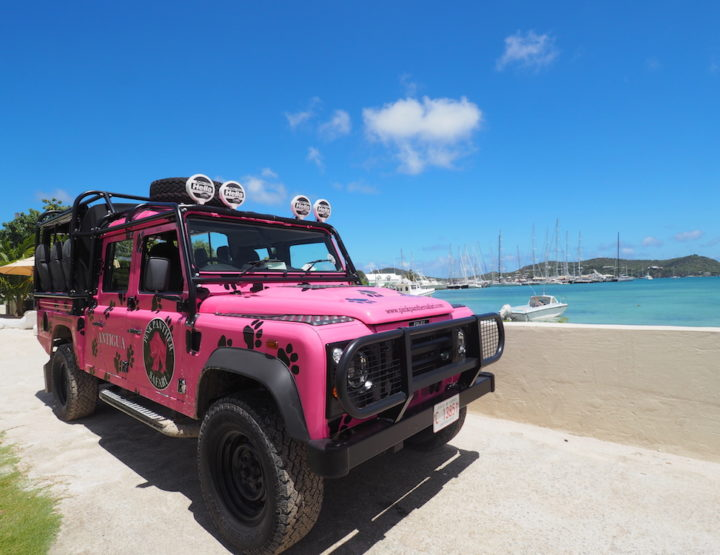 8 Beautiful Spots on the Pink Panther Safari Tour in Antigua