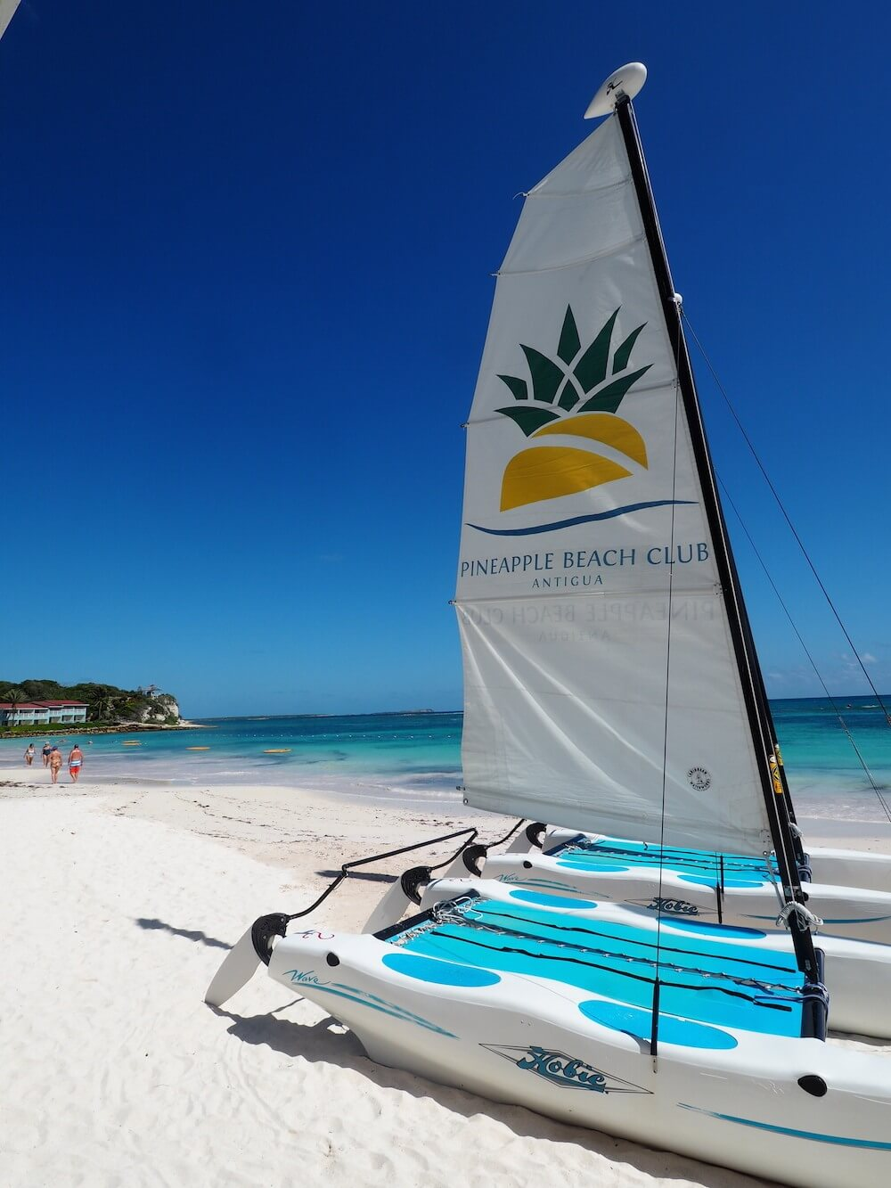 Pineapple-Beach-Club on the beach