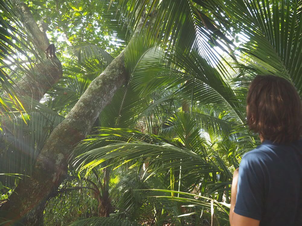 must sees in Costa Rica