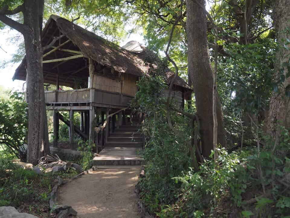 Malawi Safari Liwonde National Park