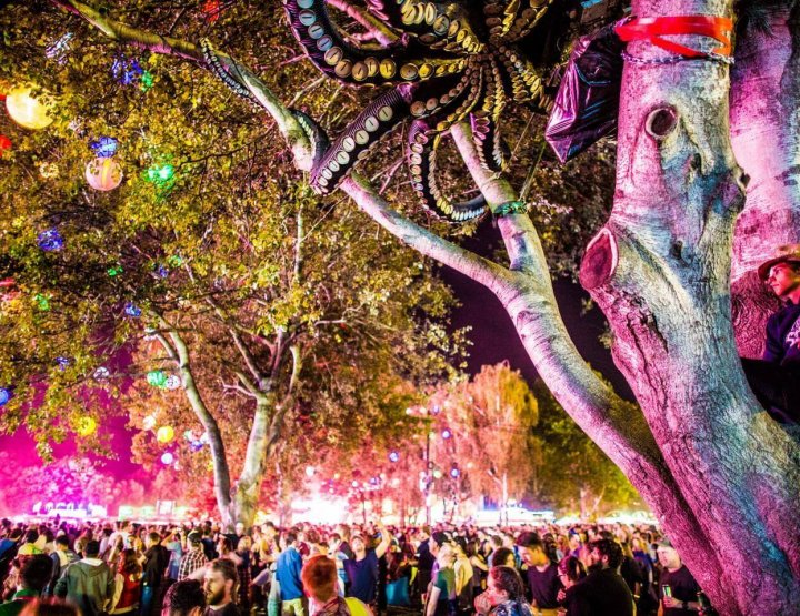 Top 10 Things to Do at Sziget Festival