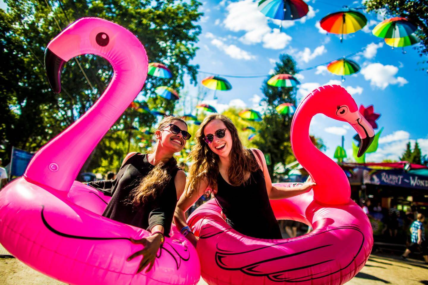 Things to do at Sziget Festival