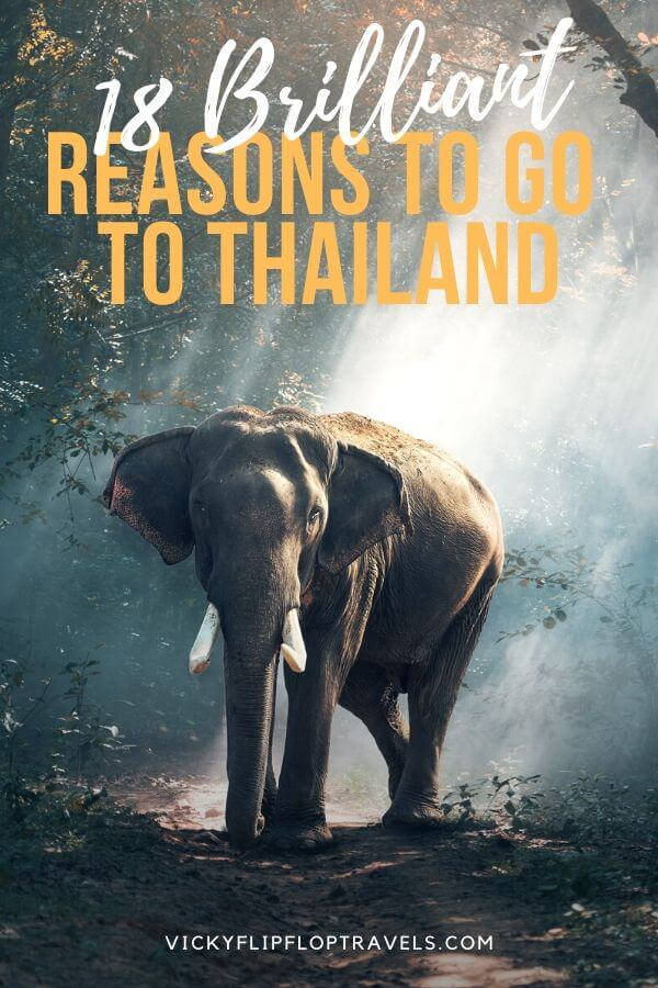 reasons to go to thailand