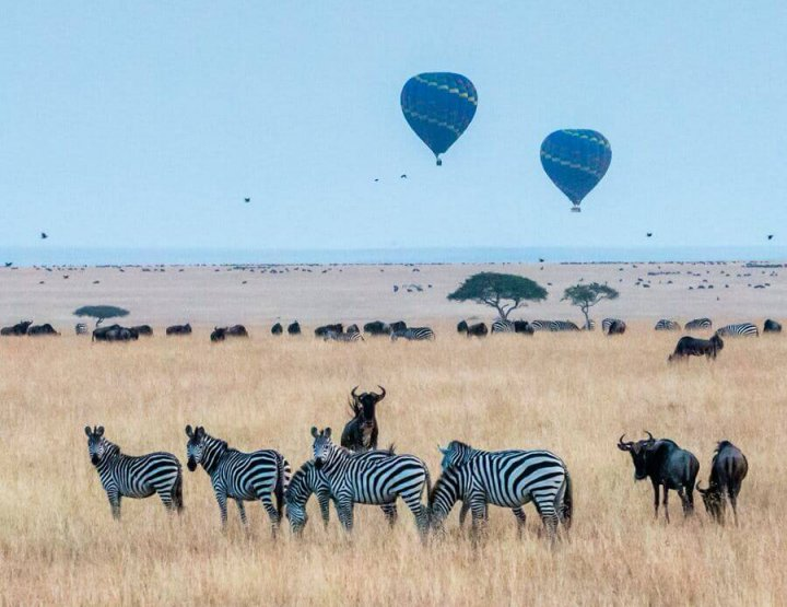 10 Best Views to Safari in East Africa