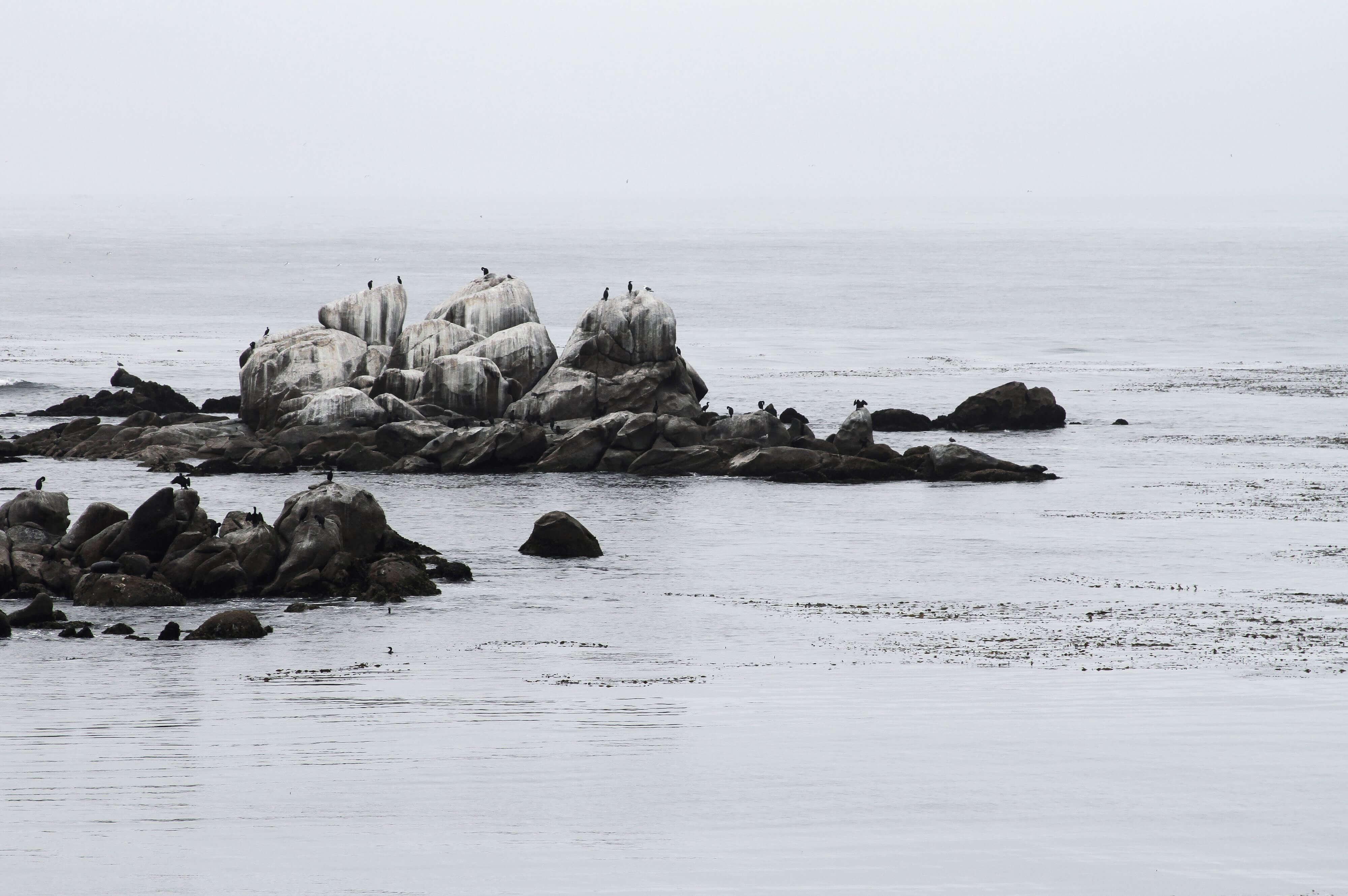 rocks in monterey bay