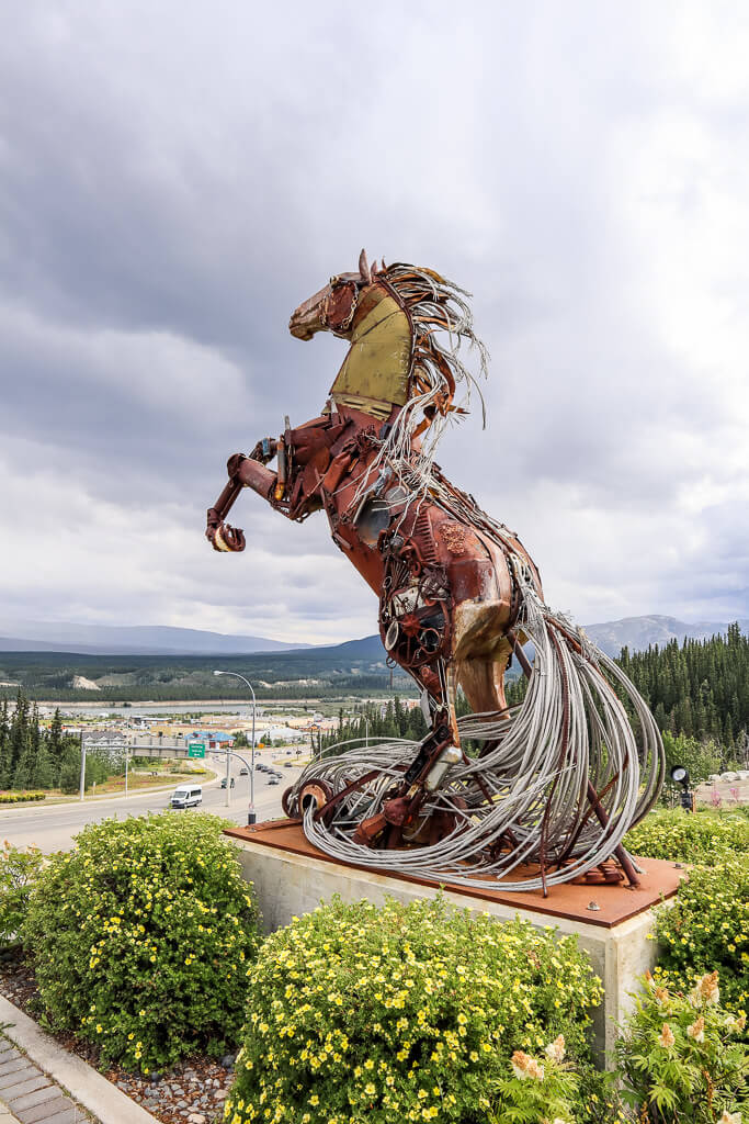 white horse in whitehorse canada
