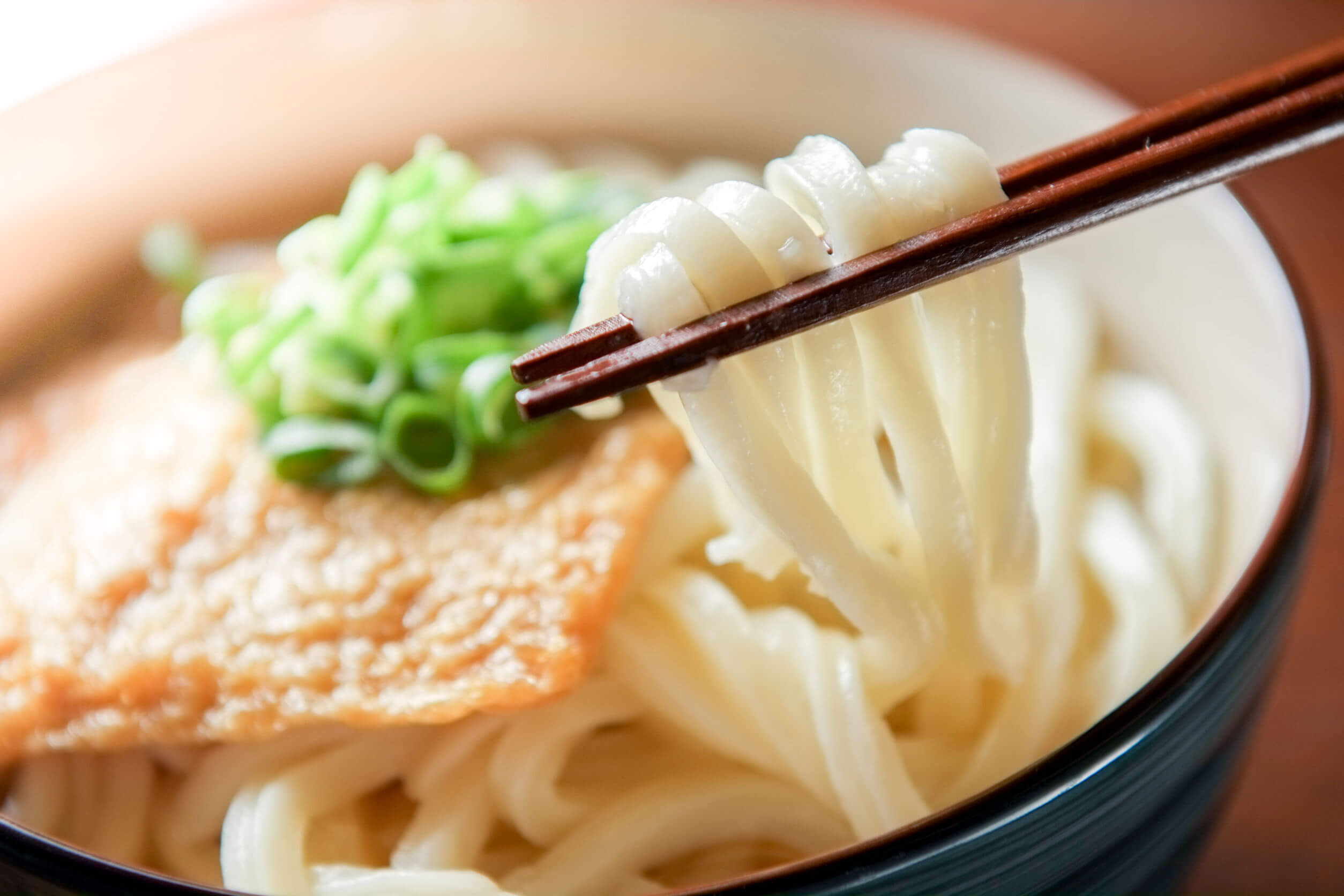 Udon noodles food in japan