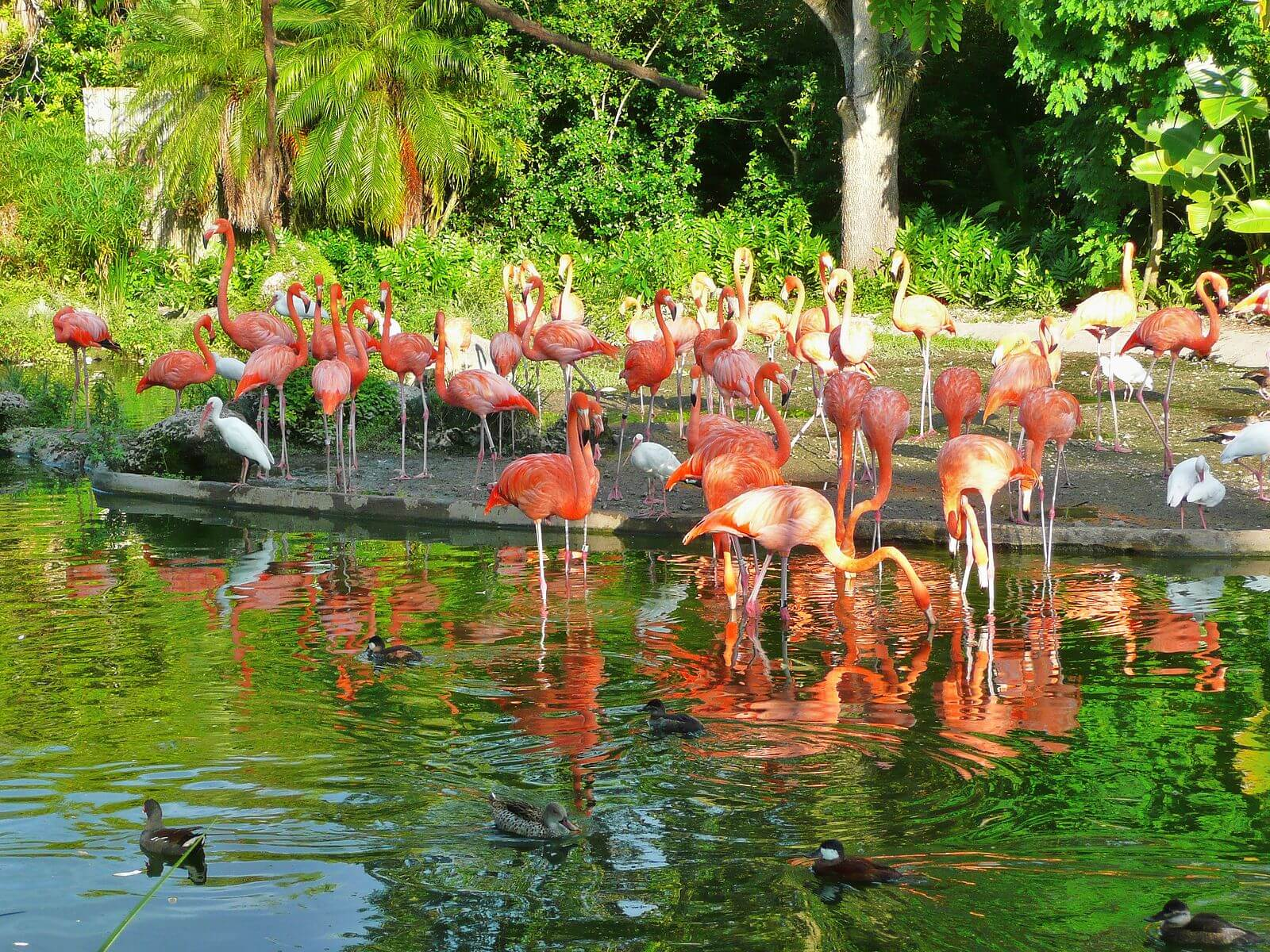 biggest zoos