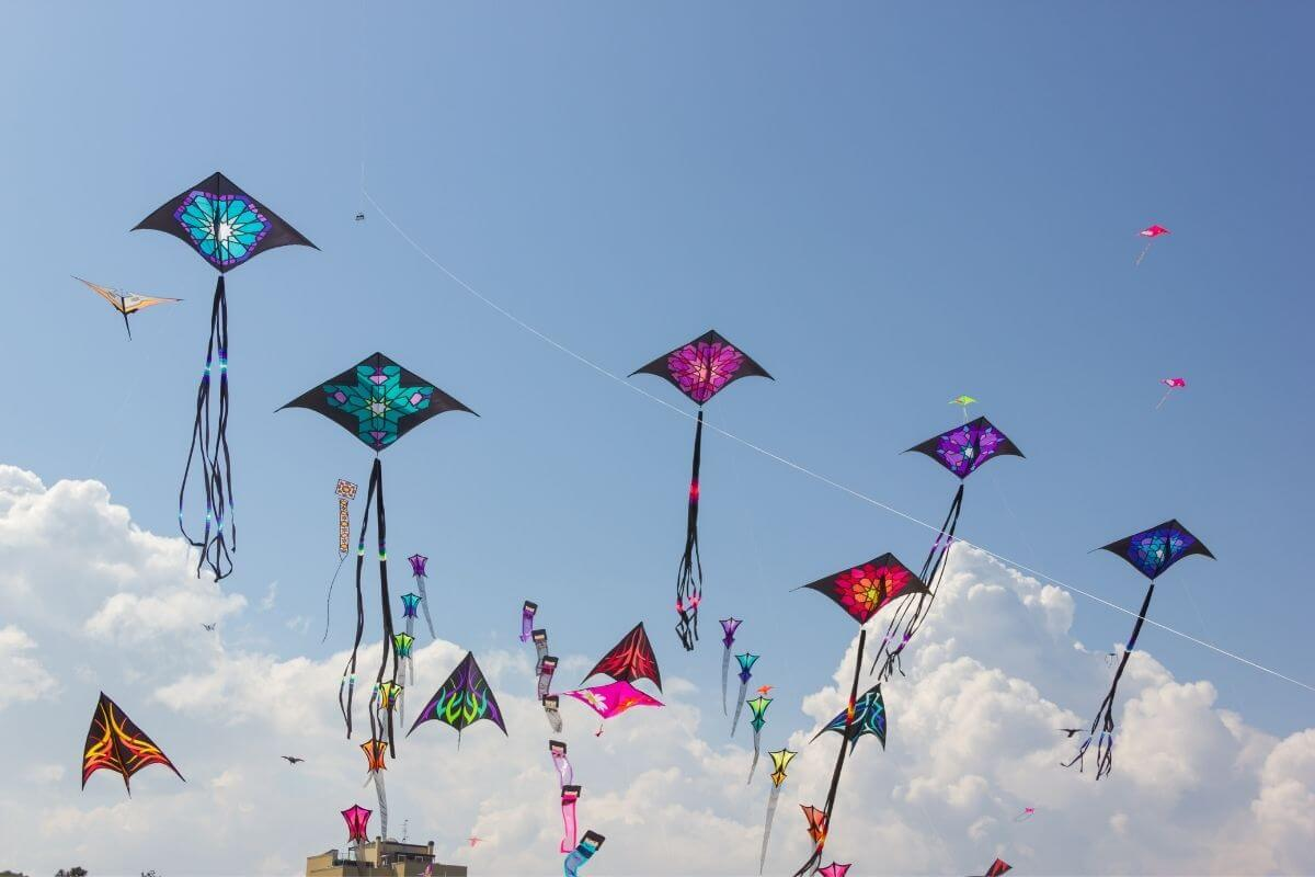 festival about kites