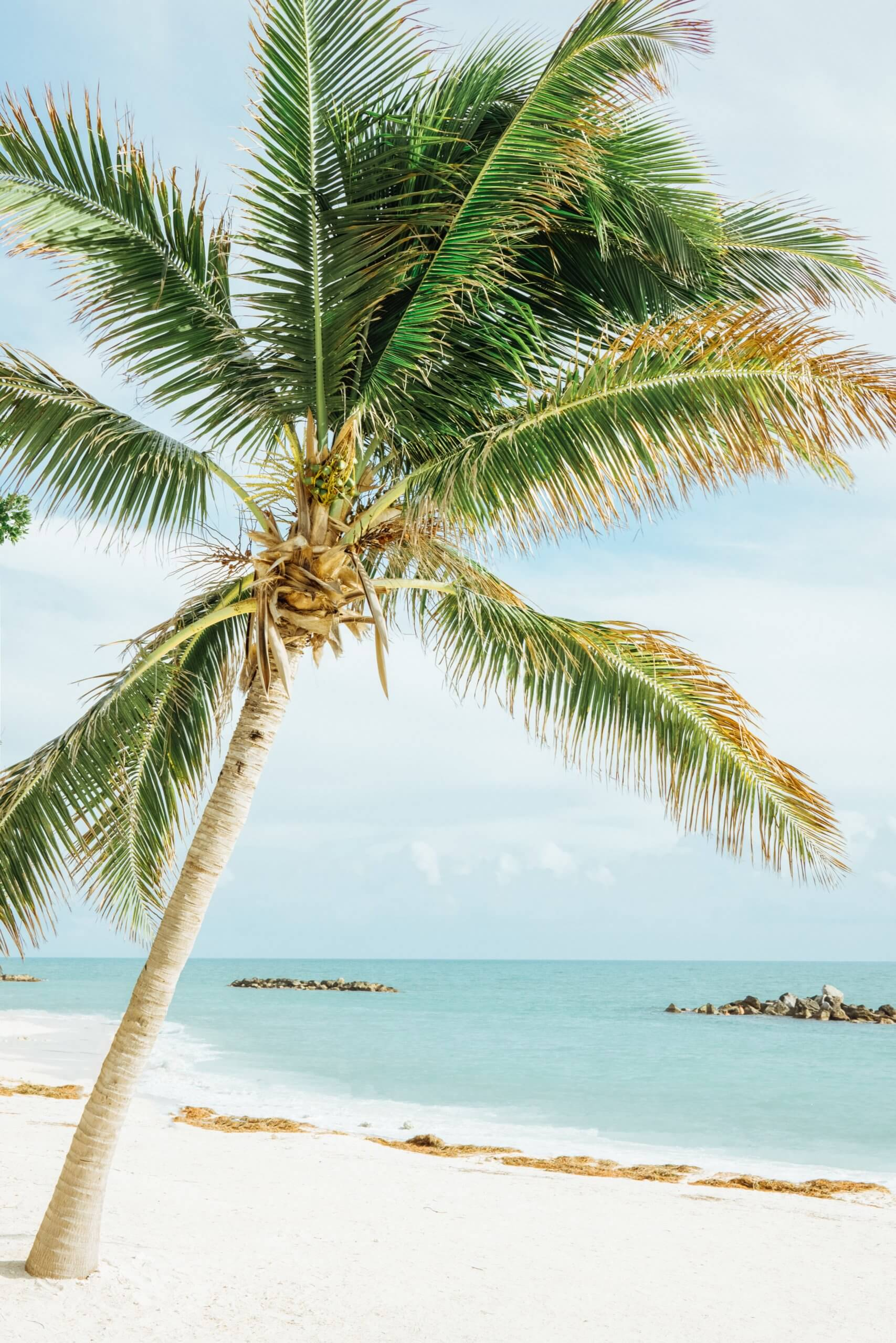 travel tips in the florida keys